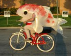 fishman on a bike