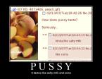 Pussy Taste Description
