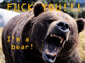 Fuck You Bear