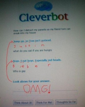 Cleverbot zing