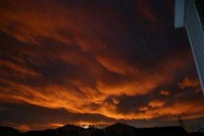 Sunset my back yard