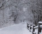 Snowy Roads wallpapers 2