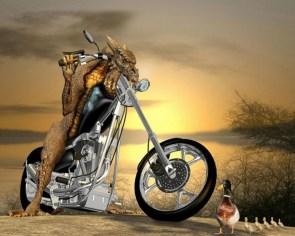 Demon Lizard Bike