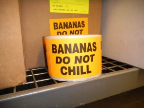 Bananas Do Not Chill
