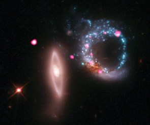 Ring of Black Holes