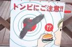 Japanese Warnings