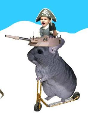 War Chinchilla Pirate Child Amigo!