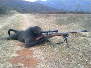 Sniper Crowbar