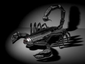Black Metal Scorpion
