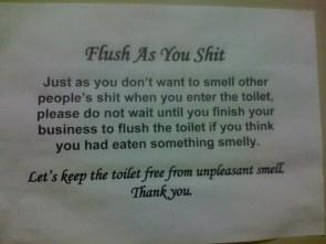 Flush as you shit