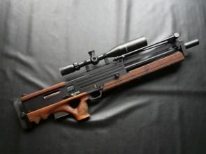 FTW gun