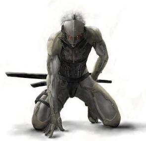 MGS: Raiden