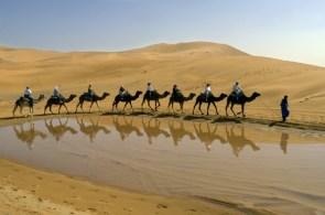 camel lake