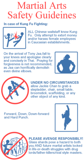Martial Arts Safety Guidelines
