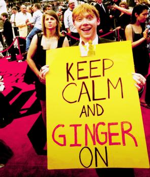 ginger off