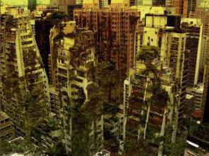 Vegetation City