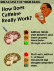 how does caffeine really work?