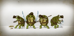 Ninja Turtles In Ninja Hoods