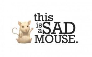 sad mouse