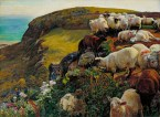 lambs jumping over cliff