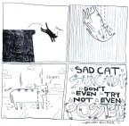 Cat suicide