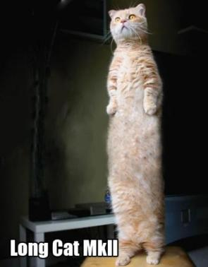 Long cat MkII