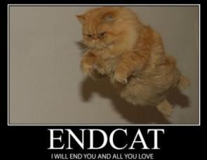 End Cat