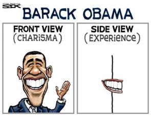 Obama's Experience