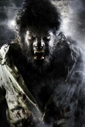 First look at Benicio del Toro as The Wolf Man