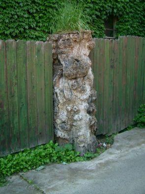 Innovative Fencepost