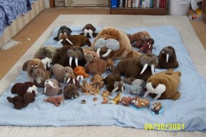 My Toy Walrus Collection