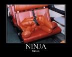 Beginner Ninja