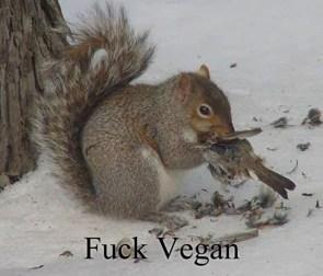Fuck vegan.