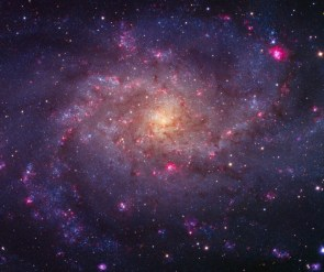 "M33 ""Triangulum Galaxy"""