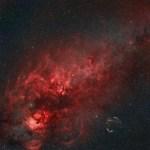 Cygnus-80mm-Mamiya.jpg