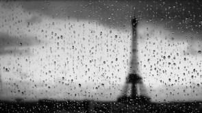 Paris rain wall