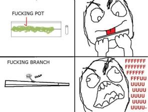 Fucking branch.