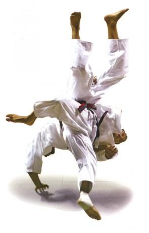 Judo Throw
