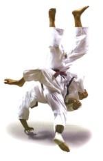 Trowing-in-Judo.jpg