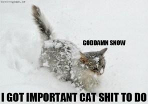 Goddamn snow