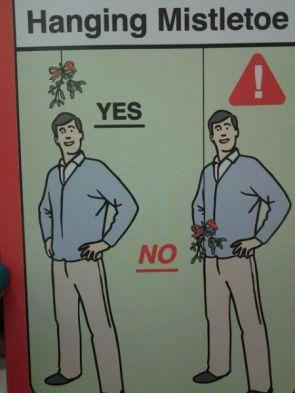 How to Hang Mistletoe