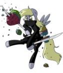 derpy ninja