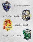 hogwarts divisions