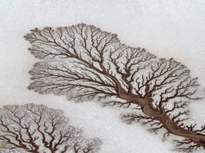 Frozen ground Baja California