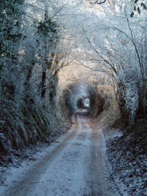winter tunnel