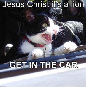 jesus_christ_its_a_lion.jpg
