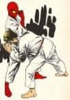 Spiderman Karate