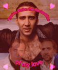 you stole the declaration