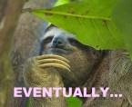 SOON Sloth