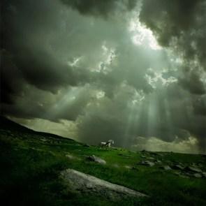 Horse underneath clouds